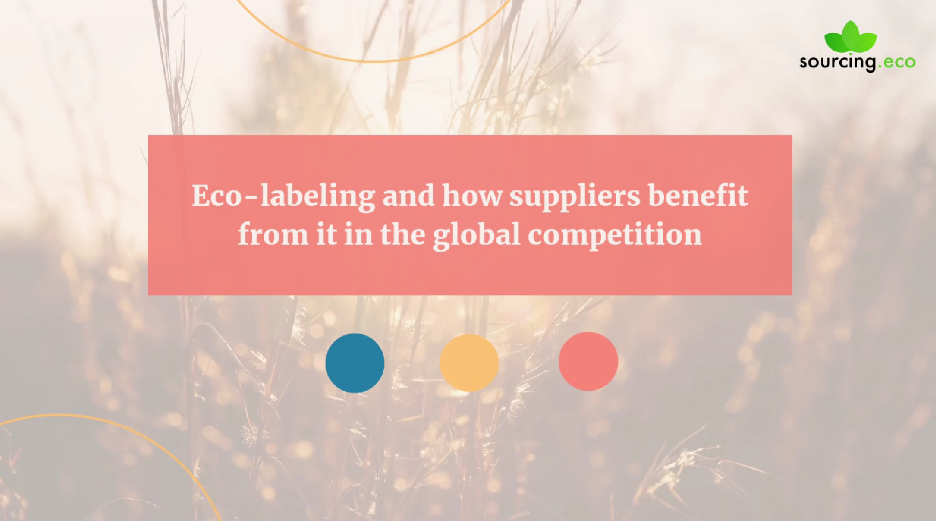 Eco-labeling and how suppliers benefit from it in the global competition